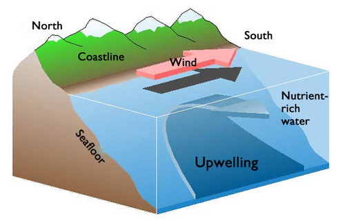 diagram of how a ocean current is formed pictures to pin. Black Bedroom Furniture Sets. Home Design Ideas