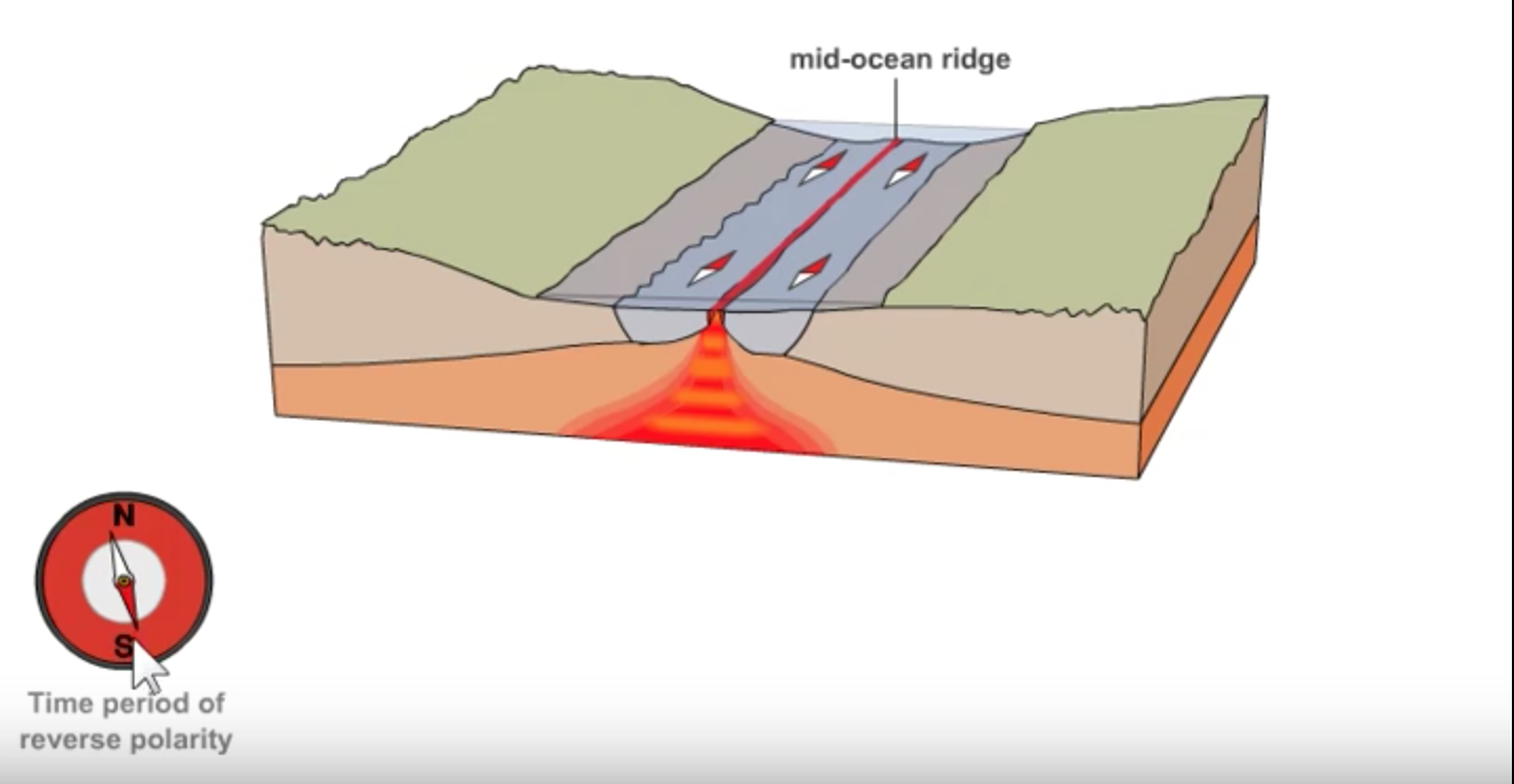 Magnetic evidence for seafloor spreading ck 12 foundation magnetic field reversal and seafloor spreading pooptronica