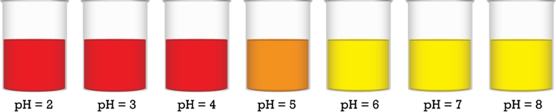 Many Indicators Are Available To Help Determine The PH Of Solutions A List Most Common Is Found In Table Below Along With Their