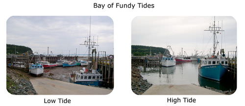 The intertidal zone can be identified in by comparing these pictures of high tide and low tide