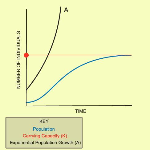 Population Growth Patterns | CK-12 Foundation
